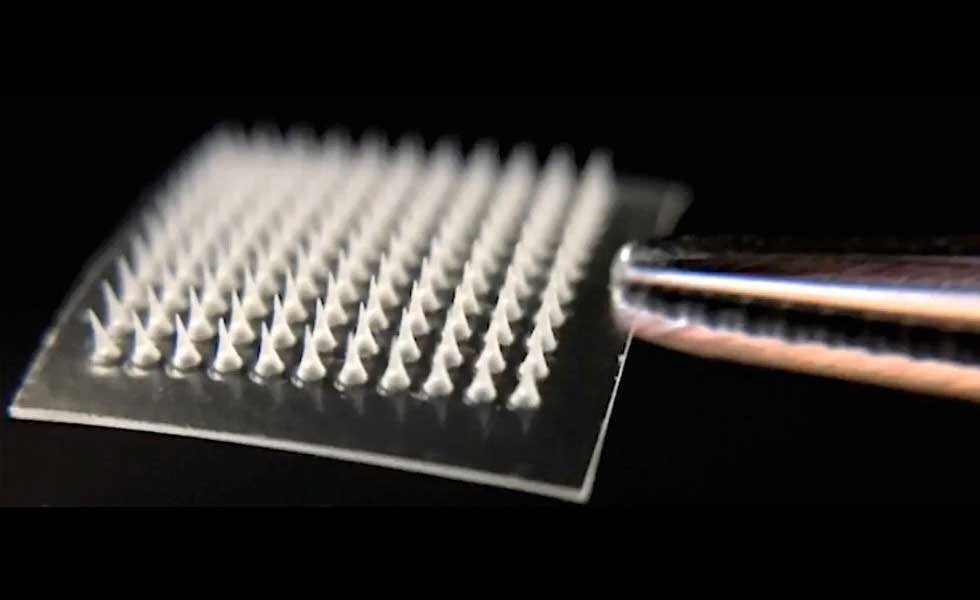 Needle-Covered Patch Dissolves Excess Body Fat