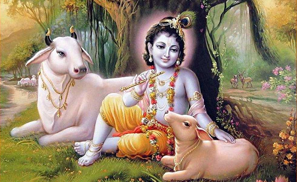 Krishna with cow Photo