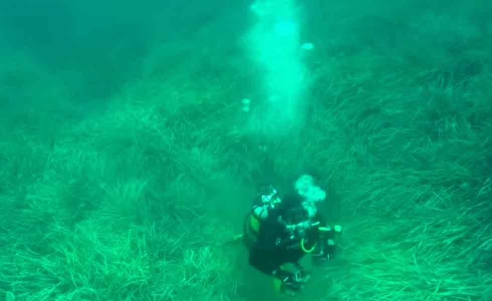 'Tsunami-sunk' Roman ruins discovered in Tunisia